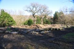 le chantier des futures terrasses de fleurs
